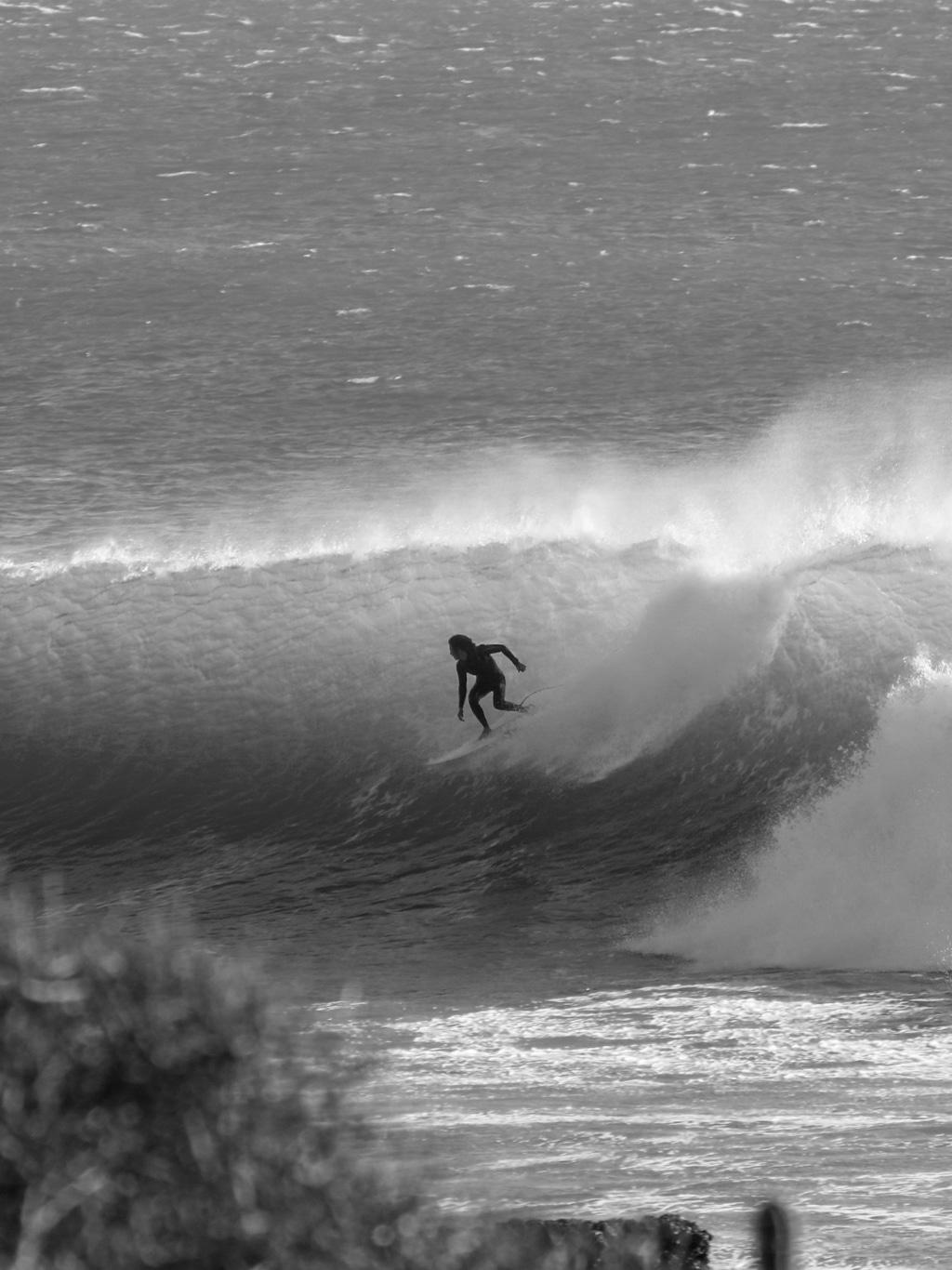 The Yogi Surfer